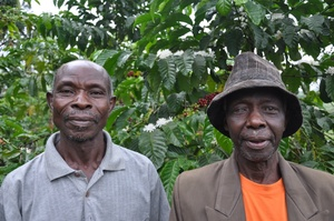 ACPCU coffee producers
