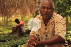 Video: COOPCAB - Rebuilding a Coffee Business in Haiti