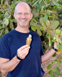 Willy holding cashew apple